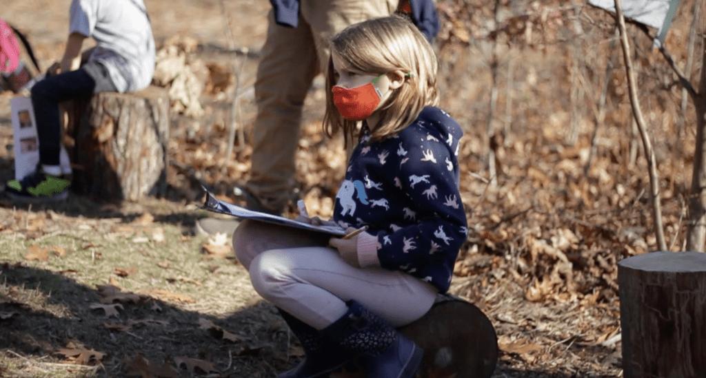 Nature based learning VES