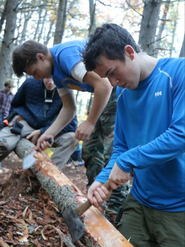 pulling off bark with an ax